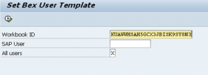 ABAP program to change Bex User Template