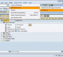 Multi-dimensional clustering in SAP NetWeaver Business Intelligence