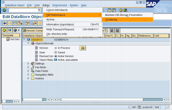 Multi-dimensional clustering option for data objects in SAP Business Warehouse
