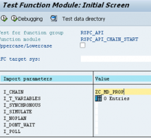 Execute process chain with function module